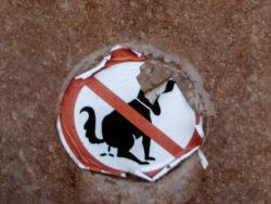 Scheißverbot. Foto: Hufner