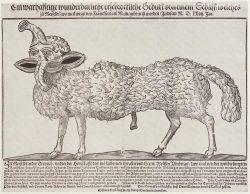 Matthäus Franck: Mißgestaltetes Schaf, geboren in Meersfeld bei Frankfurt. 1567, Holzschnitt, 27,5 × 37 cm. Zürich, Zentralbibliothek. Gedruckt von Matthäus Franck in Augsburg